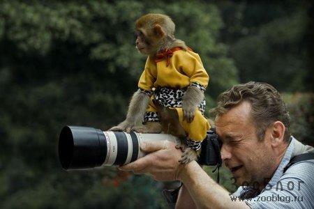 Эй, фотограф, давай-ка помогу!