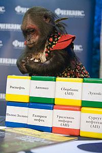 Цирковая обезьяна составила портфель акций