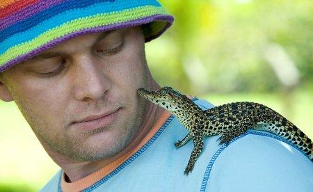 Дружелюбный крокодильчик