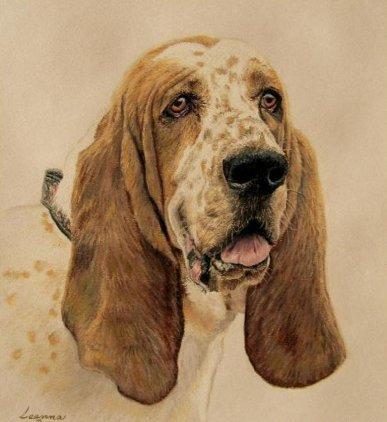 Рисованные животные Leanna Brodeur
