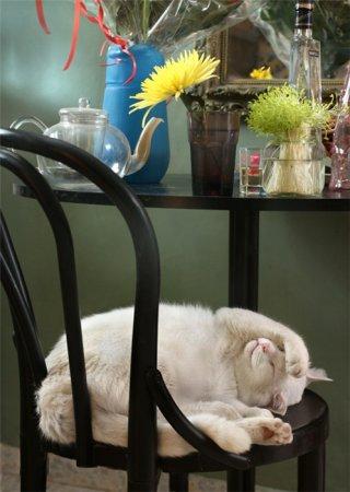 Притомился