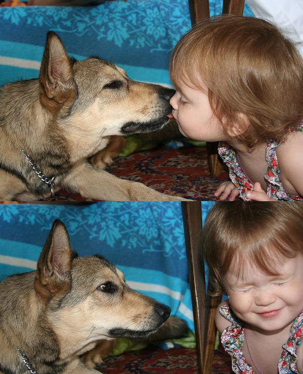 http://www.zooblog.ru/uploads/posts/2010-04/1272230675_179420-801ab-31246018-m750x740.jpg