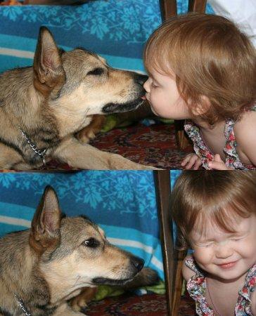 Страстный поцелуй ребёнка и собаки