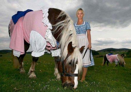 Костюмчик для лошадки