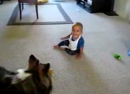 Детский смех и собака