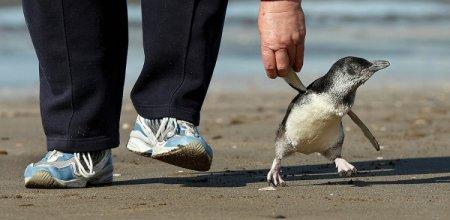 Пап, ну идём гуляяять!
