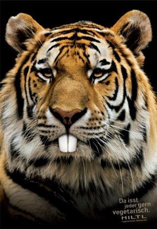 Тигр-зайчик
