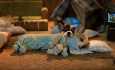 Спящие обнимашки