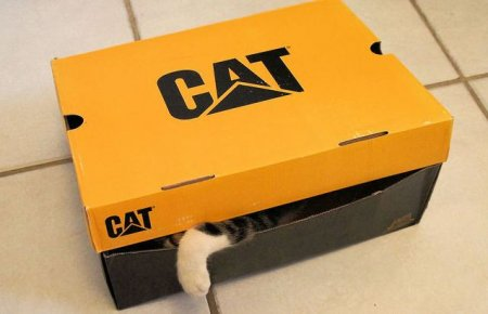 Коробка для кошек