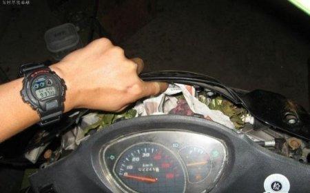 Мышь мотоциклистка