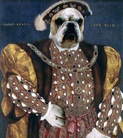Что было бы, если бы собаки правили миром