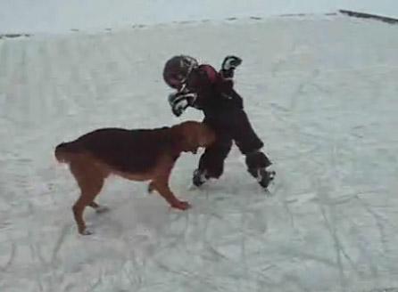 Мальчик vs собака