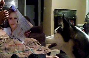 Собака боится Джулии Робертс