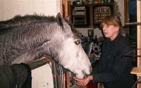 Лошадь, живущая в квартире