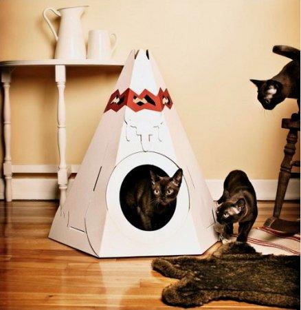 Невероятный дизайн для котов