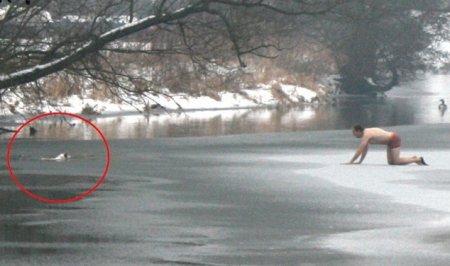 Англичанин спас свою собаку из-под льда