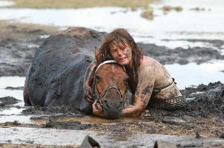 На пляже Мельбурна несколько часов спасали лошадь