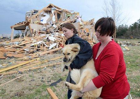 Фото дня: люди спасают своих питомцев из разрушенных торнадо домов