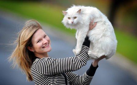 Землетрясение помогло найти сбежавшего три года назад кота