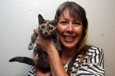 Манчкин Пиксель претендует на звание самой низкорослой кошки в мире (6 фото)