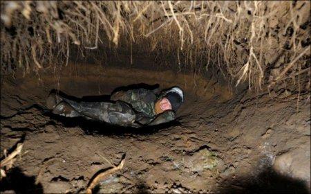 Как выглядит изнутри медвежья берлога (3 фото)