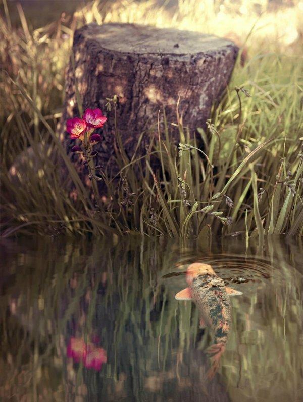 Живые фото от Рейчел Беллински