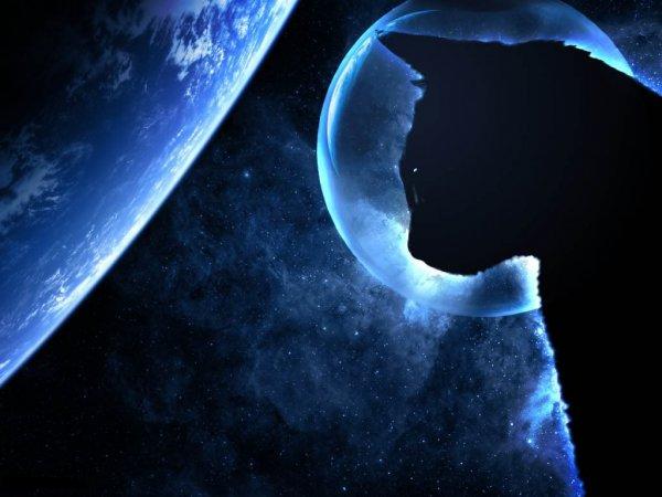 Коты - это пришельцы из космоса?